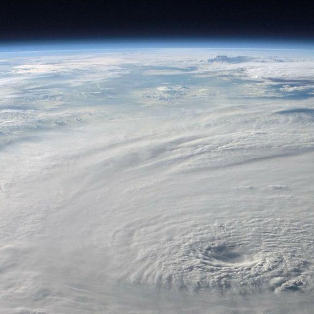 Triodos Bank unterstützt Klima-Allianz in Belgien
