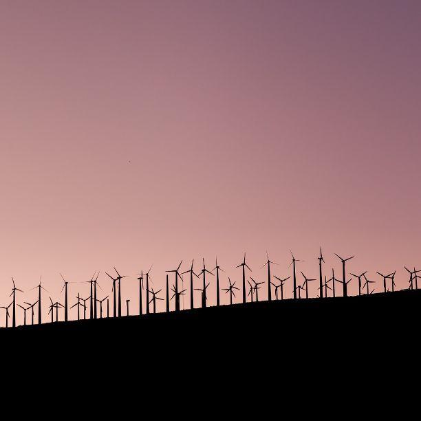 Triodos Bank erweitert Schwerpunkt und verdoppelt Finanzierungsvolumen für Energiewende