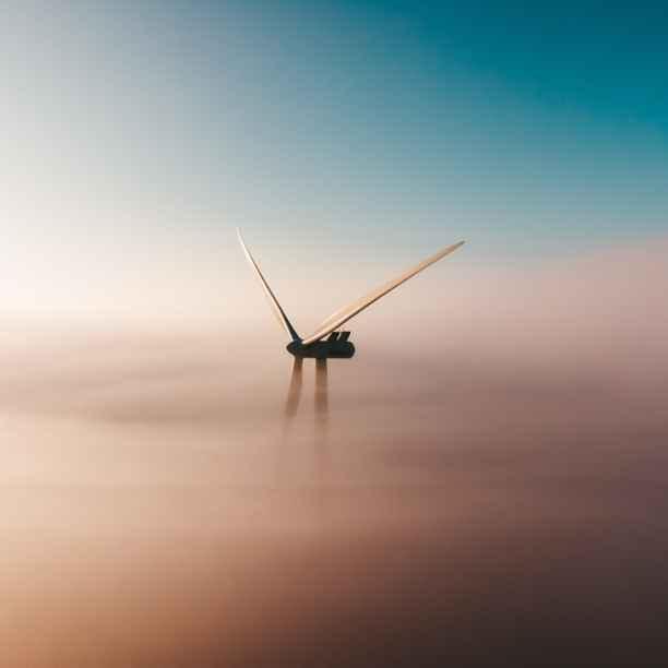 Triodos Bank finanzierte 2020 weltweit die meisten Erneuerbare-Energie-Projekte